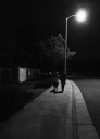 A Night Walk