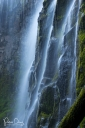 Close up of Proxy Falls